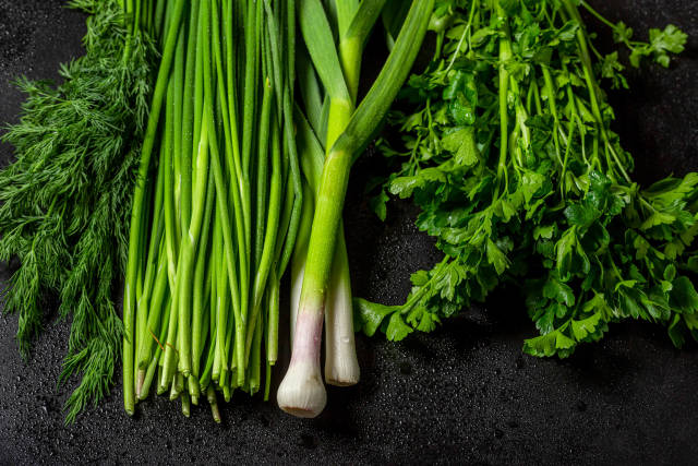 Fresh greens dill, green onion, parsley and garlic on black background