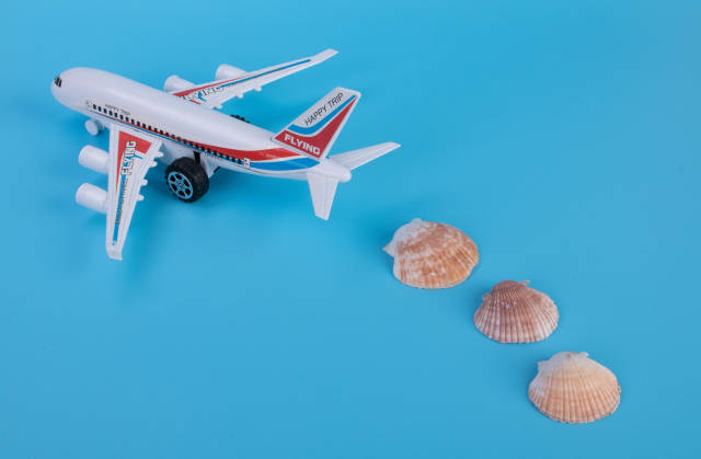 Small airplane with sea shells on blue backgound