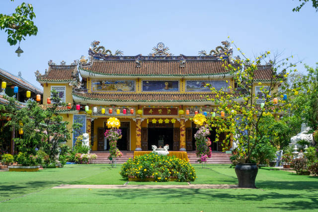 Phap Bao Temple with Yellow Apricot Blossom Tree, other colorful Flowers and Lanterns at a Big Courtyard in front of the Pagoda