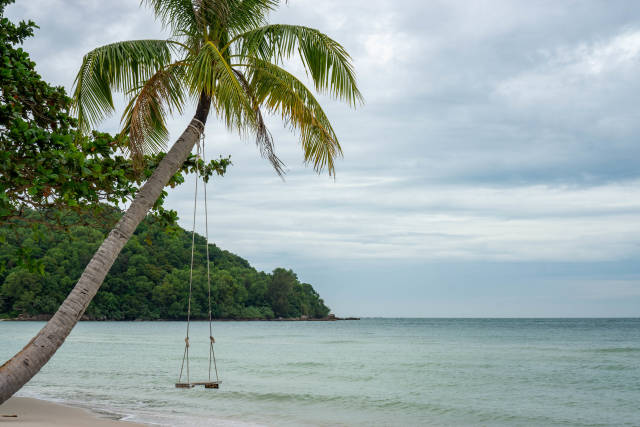 Swing hanging on a Palm Tree reaching out to the Sea at Sao Beach on Phu Quoc Island, Vietnam