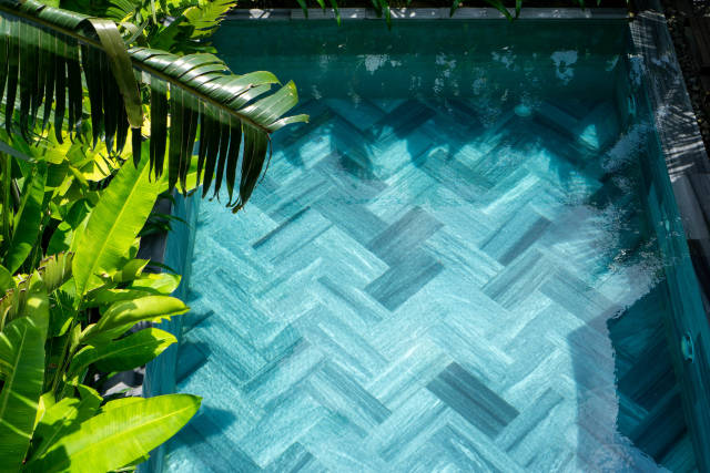 Banana Leaves, Palm Trees and other Plants around a Small Swimming Pool at a Hotel in Hoi An, Vietnam