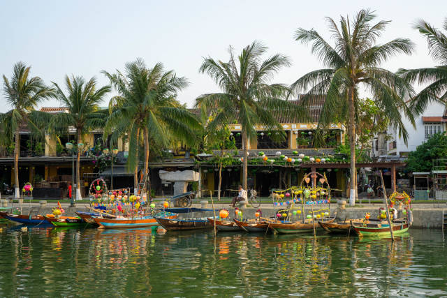 Wooden Rowing Boats decorated with Colorful Lanterns for Tourists on Thu Bon River with Palm Trees, Restaurants and Shops in the Background in Hoi An, Vietnam