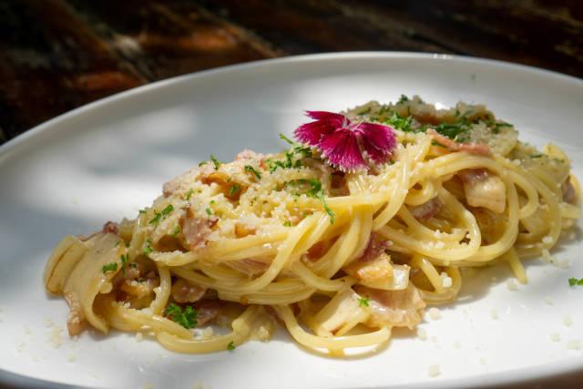 Spaghetti Carbonara mit Speck, Geriebenen Parmesan Käse, Pilzen, Zwiebeln und Kräutern auf einem weißen Teller in der Sonne Nahaufnahme