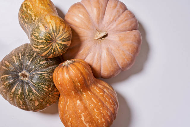 Pile of various pumpkins on white background